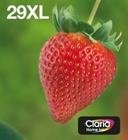 Epson Tinte Multipack 4-Farben 29XL EasyMail T2996